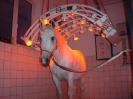 18_Wellness_für_Pferde_1